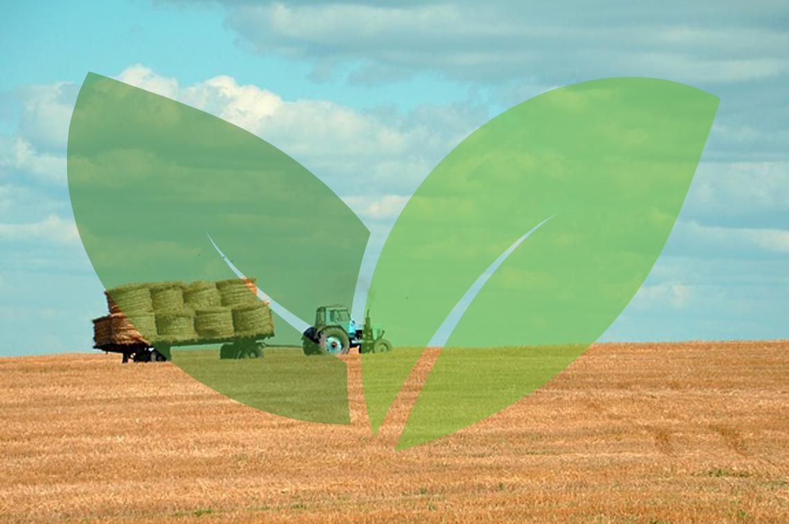 AGRICOLTURA E AGROINDUSTRIA
